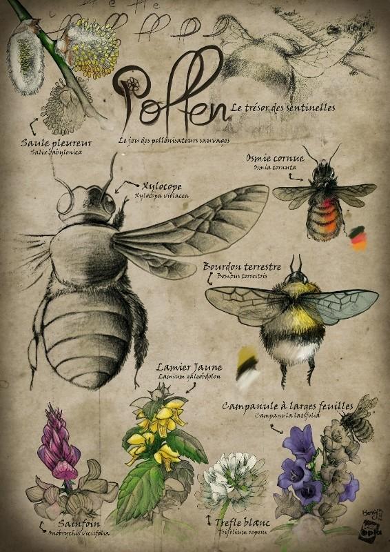 L'ex'pollen, par Alexandre Droit, Florent Toscano et David Boniffacy