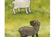 Sheepdogs of Pendleton Hill
