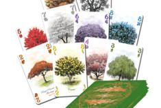 Les cartes d'Arboretum
