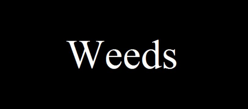 Le jeu gratuit de la semaine :  Weeds