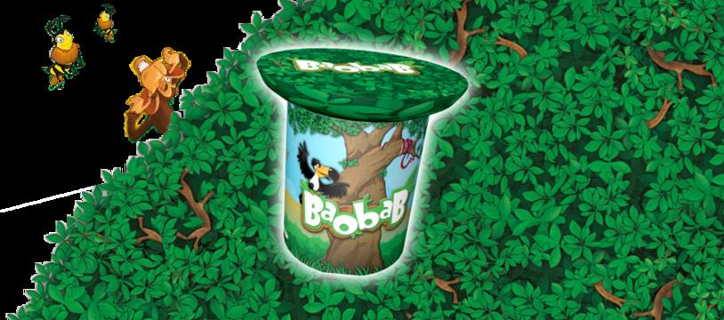 Baobab : bien installé dans mon canopée