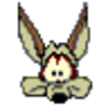 Coyote90