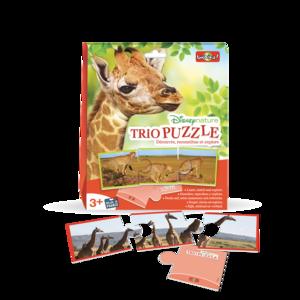 Trio Puzzle