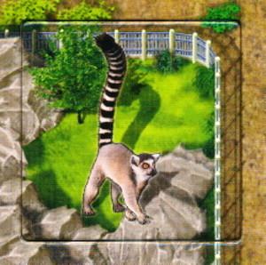 Zooloretto : Katta